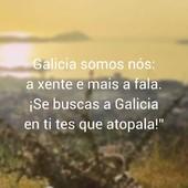 5. #galiciacalidade #galiciamola #galiciamaxica #productosgallegos #productosartesanos #productosartesanosgallegos #productosgourmet #cestaspicnic #poemasgallegos #comerbien #disfrutaverano #gourmetexperience #slowlife #galicia #orgullogalego #DisfrutaGalicia #Gastronomíagallega #gastronomiagallegaexquisita